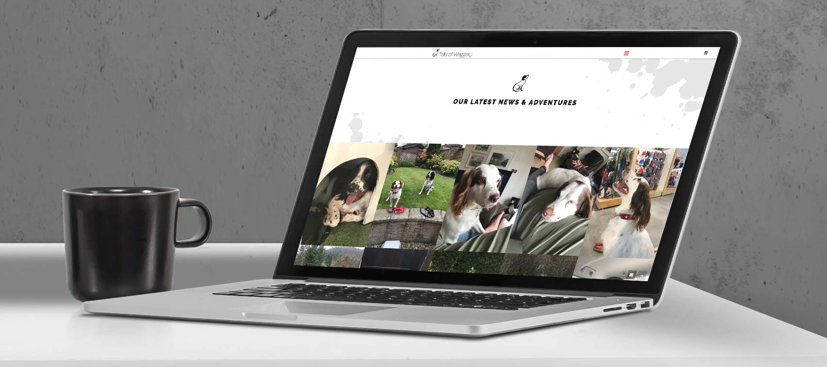 Tails Of Waggery | Responsive Website Design